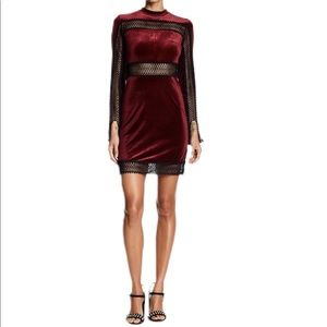 Romeo And Juliet Couture Velvet Sheer Lace Dress